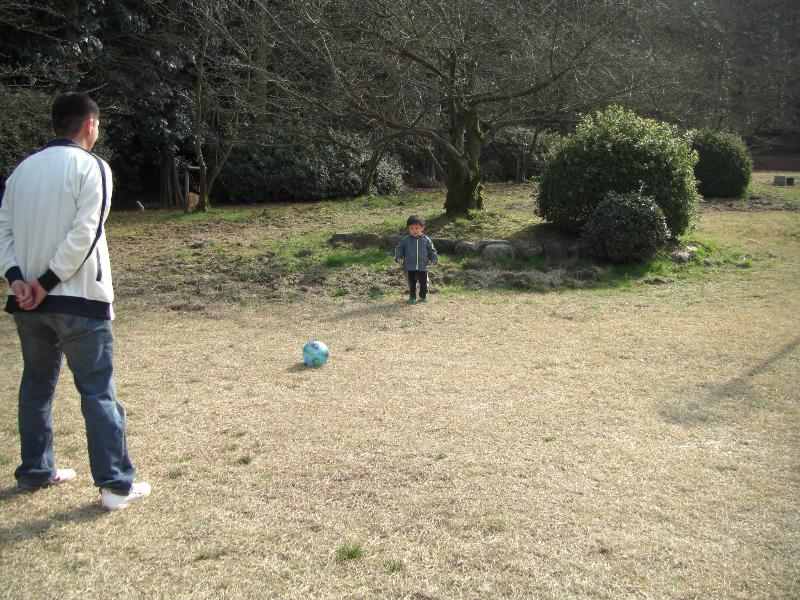 新居浜市 滝宮公園 お花見スポット