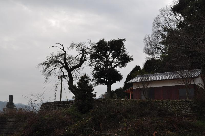 西条市丹原町 歓喜寺 風景