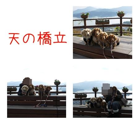 かに旅行2