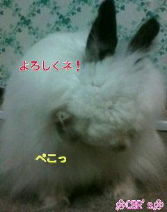 20100821211114.jpg