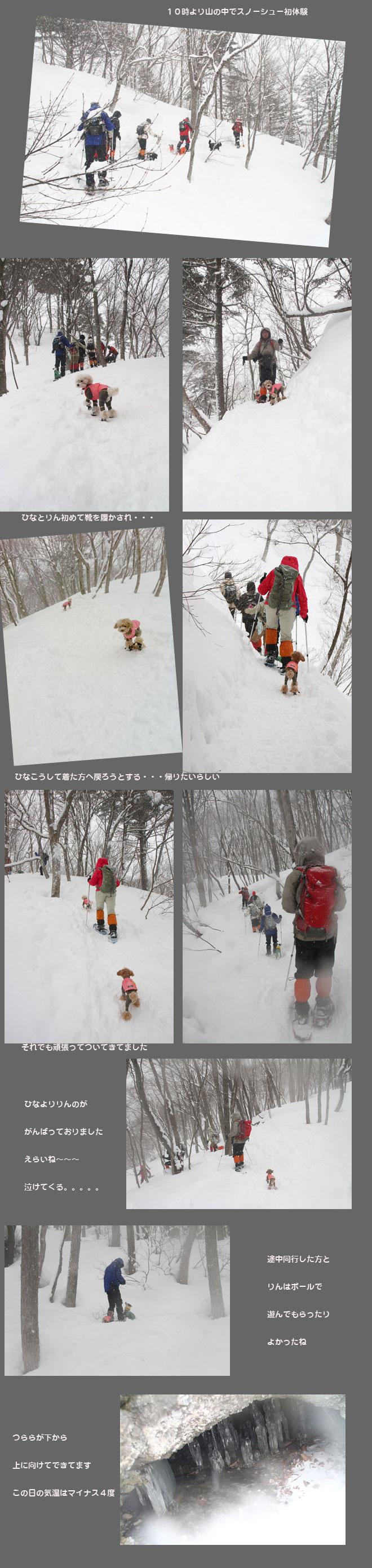 sunosyu-hhh.jpg