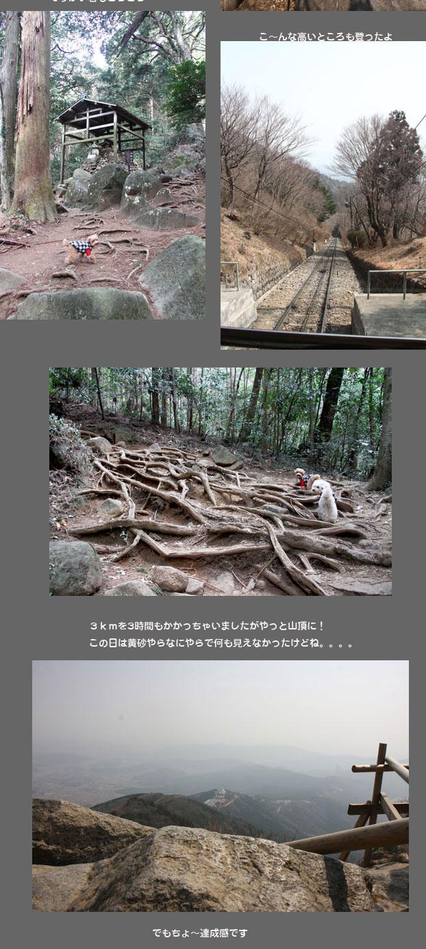 tukubasan2-2.jpg