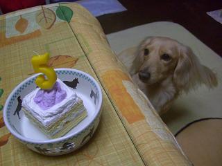 ケーキだな^^