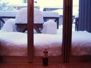 20110115本日の積雪