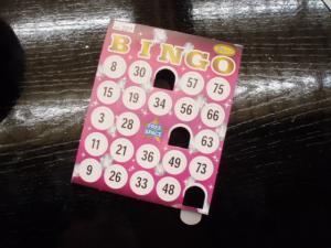 20110129ビンゴカード
