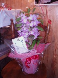20110202お花