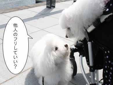 IMG_5142.jpg