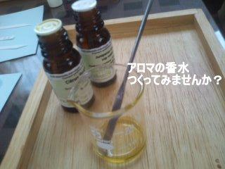 PA0_0018_20120414105209.jpg