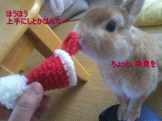 PA0_0049_20120308151413.jpg