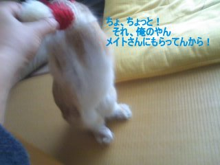 PA0_0051_20120308152427.jpg