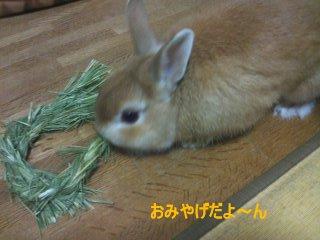 PA0_0052_20120226203831.jpg