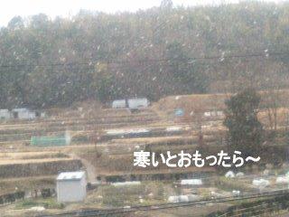 PA0_0058-1.jpg