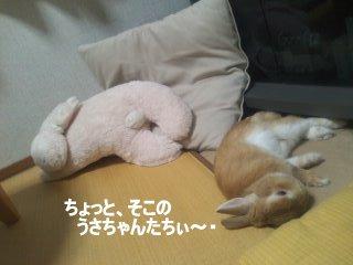 PA0_0076_20120414103314.jpg