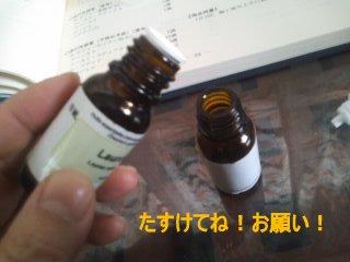 PA0_0080_20120213105638.jpg