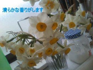 PA0_0090_20120302120411.jpg