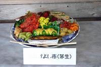 田舎の皿鉢料理070321g