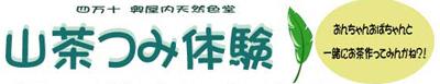 四万十奥屋内天然色堂「山茶摘み体験」2009年090427a