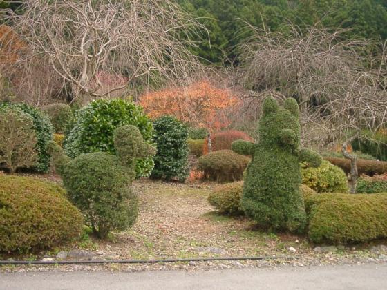 15 かわいいお庭