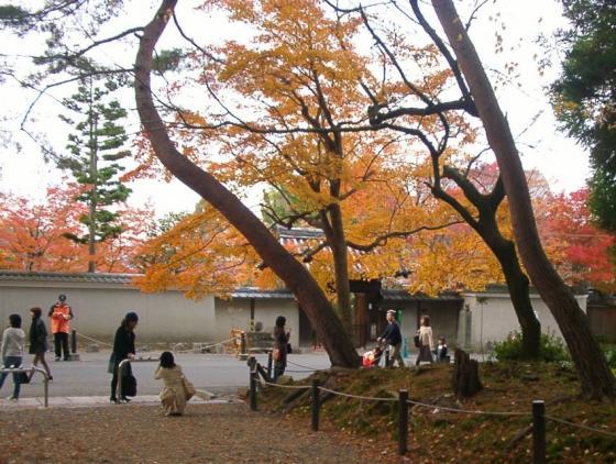 64南禅寺前