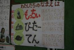 JR東日本パス宮内11