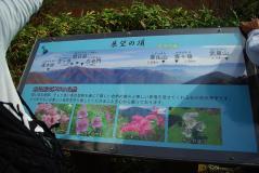 谷川2011紅葉12