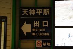 谷川2011紅葉08