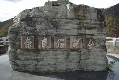 谷川2011紅葉24