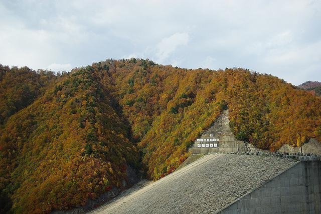谷川2011紅葉29
