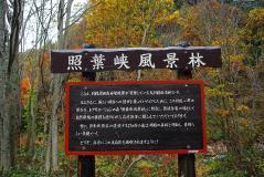 谷川2011紅葉34