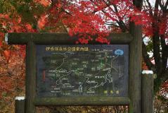 2011榛名紅葉10