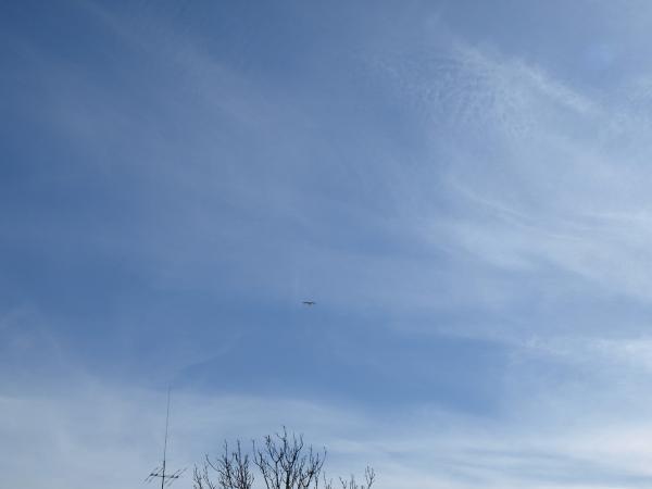 青い空に響く霧笛を聴きながら。。。