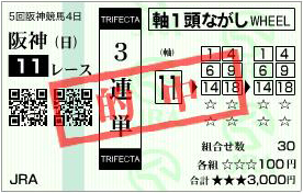 的中馬券101212-1(阪神JF)