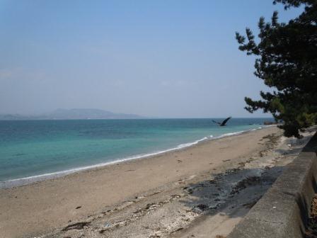 天草の海(2011.03.09)