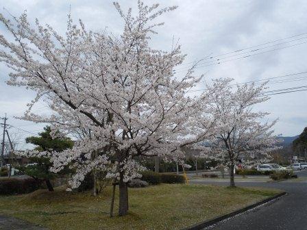 有田陶磁の里プラザ(2011.04.07)