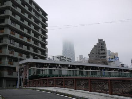110920_yoko_001.jpg
