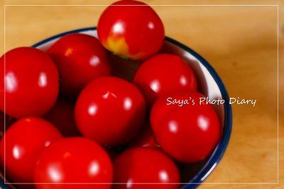 tomato_20100626223445.jpg