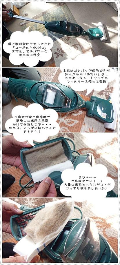 sayomaru2-304.jpg