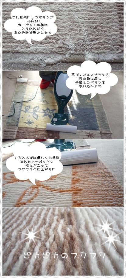 sayomaru2-306.jpg