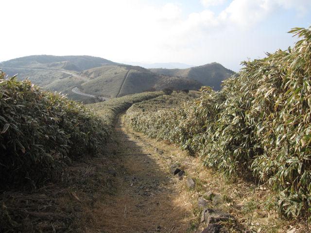 だるま山2