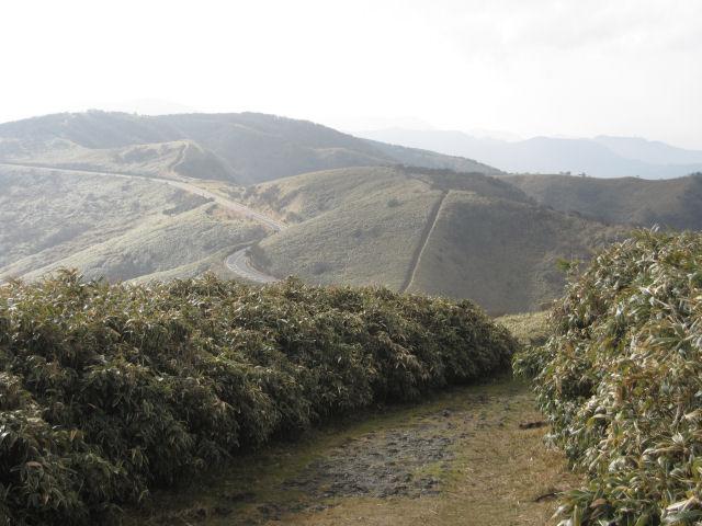 だるま山1
