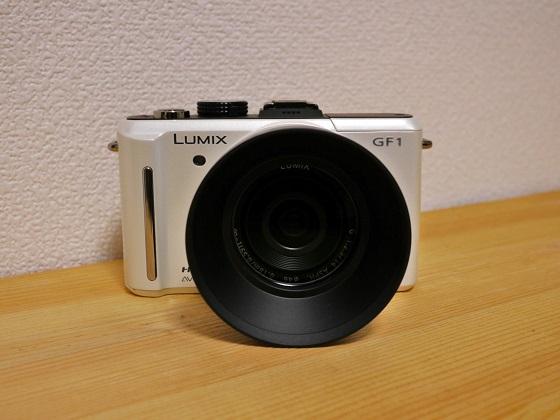 P1230878.jpg
