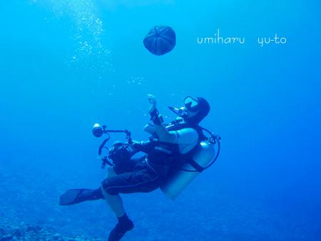 umiharu yu-to