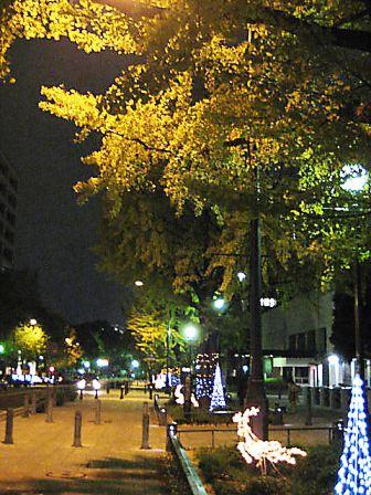 日本大通り2009年11月