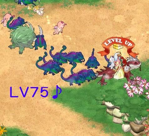 LV75w