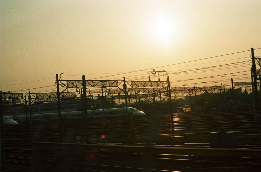 2010010303.jpg