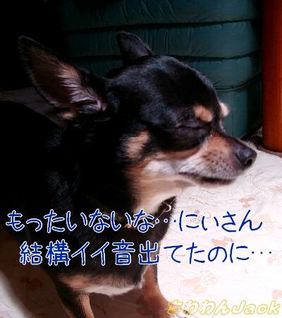 2010-07-08-1.jpg