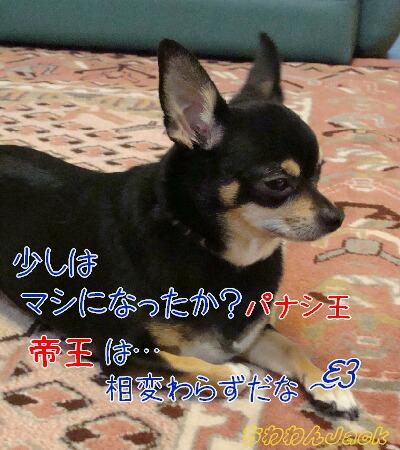 2010-07-12-1.jpg