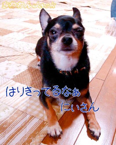 2010-08-03.jpg