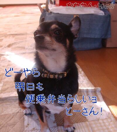 2010-09-29-2.jpg