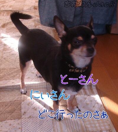 2010-10-01.jpg